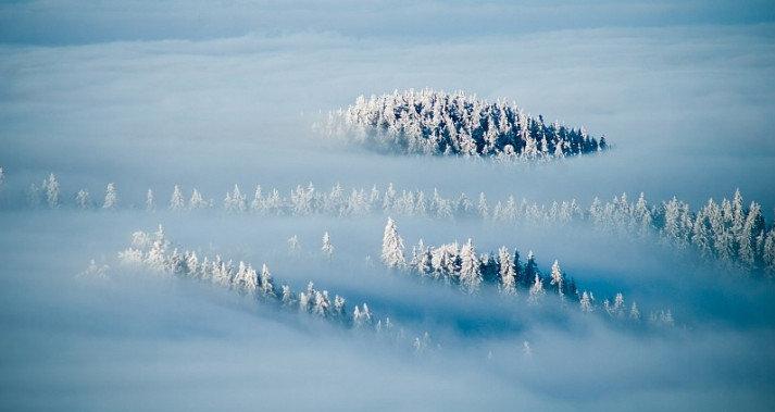 белый густой туман