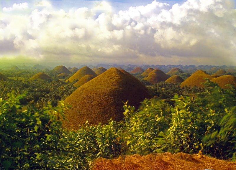 Филиппины:  трюфель