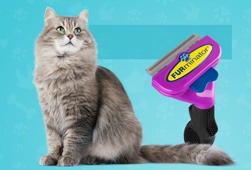 самых популярных фурминатор для кошек фото до и после отмечает