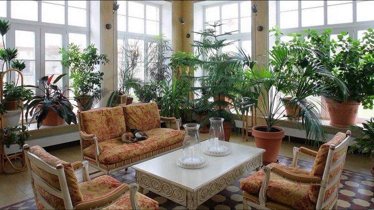 Сад из комнатных растений в квартире: ближе к природе у себя дома