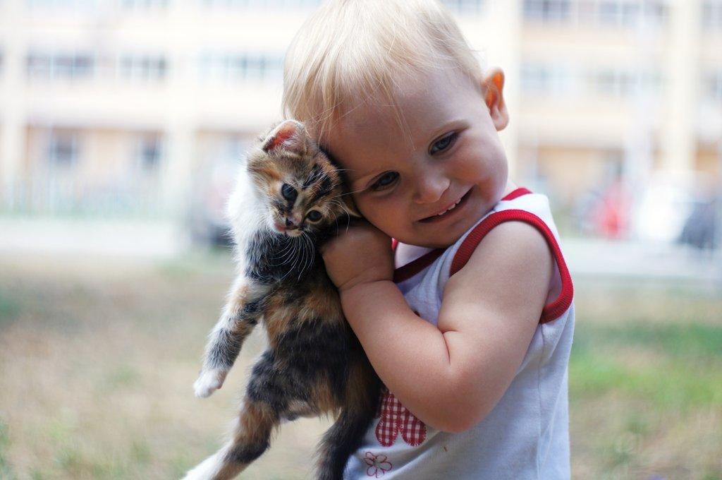 Картинки дети с животными на руках