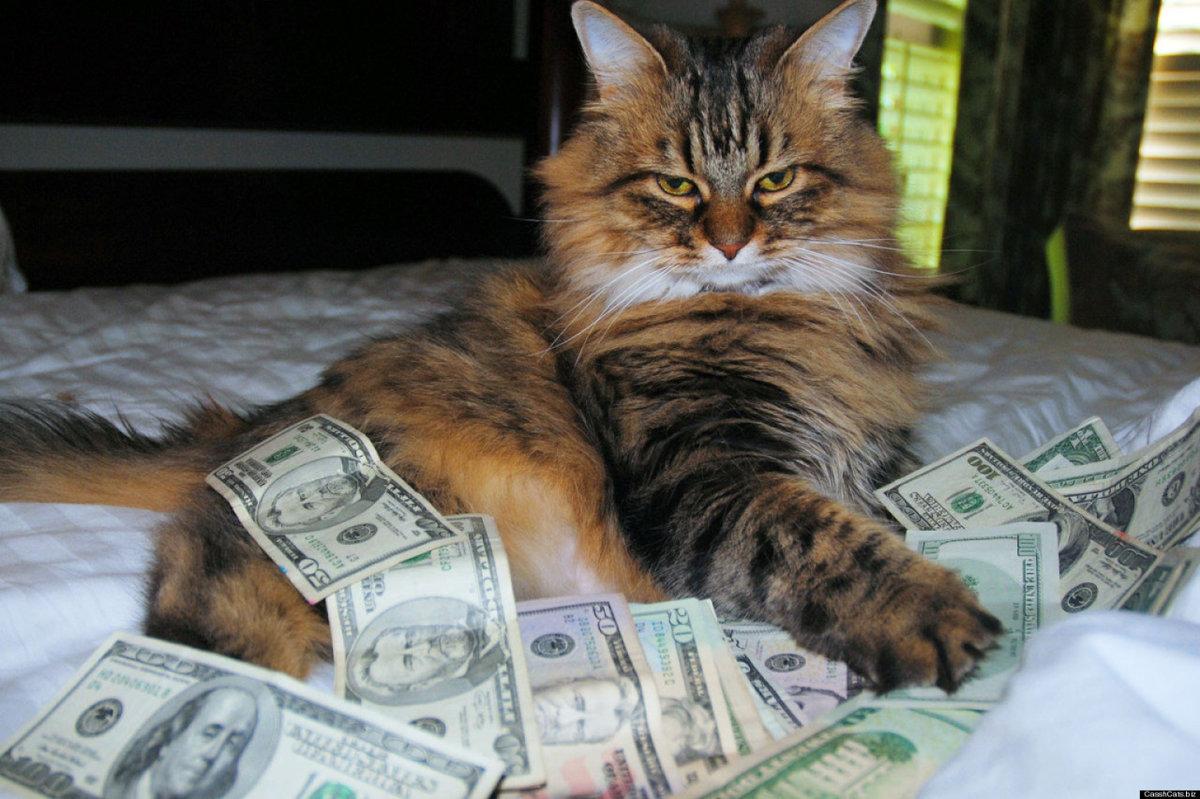 Смешные картинки деньги, надписью сделай первый