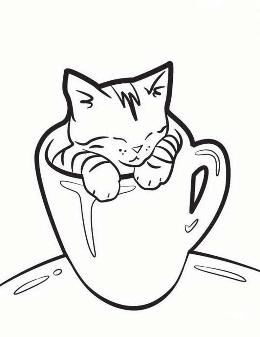 «Котенок в кружке» — карточка пользователя Евгений А. в ...