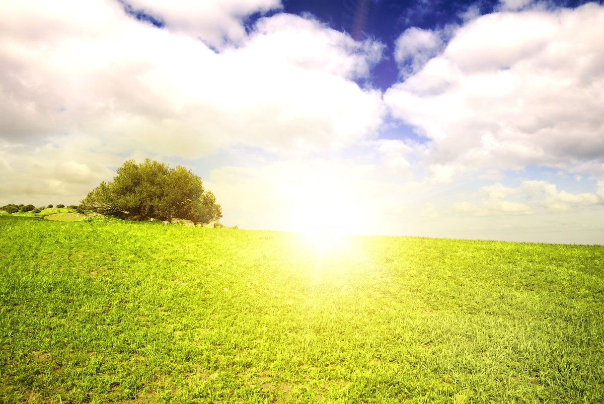 Достопримечательности белокурихи фото летом