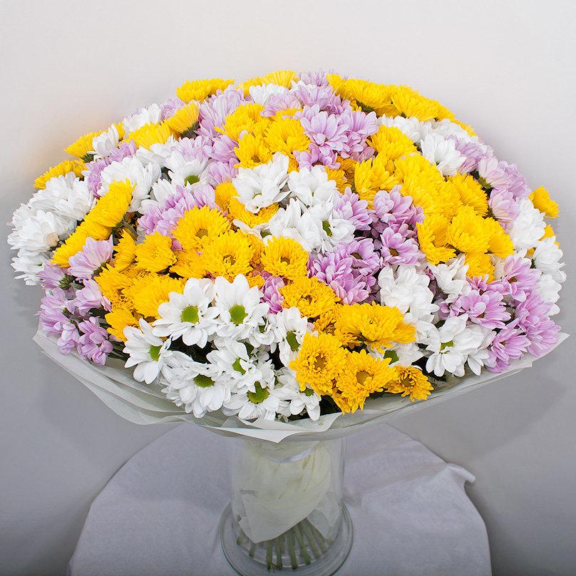 Как выглядит букет из 31 хризантемы, оптом тверь