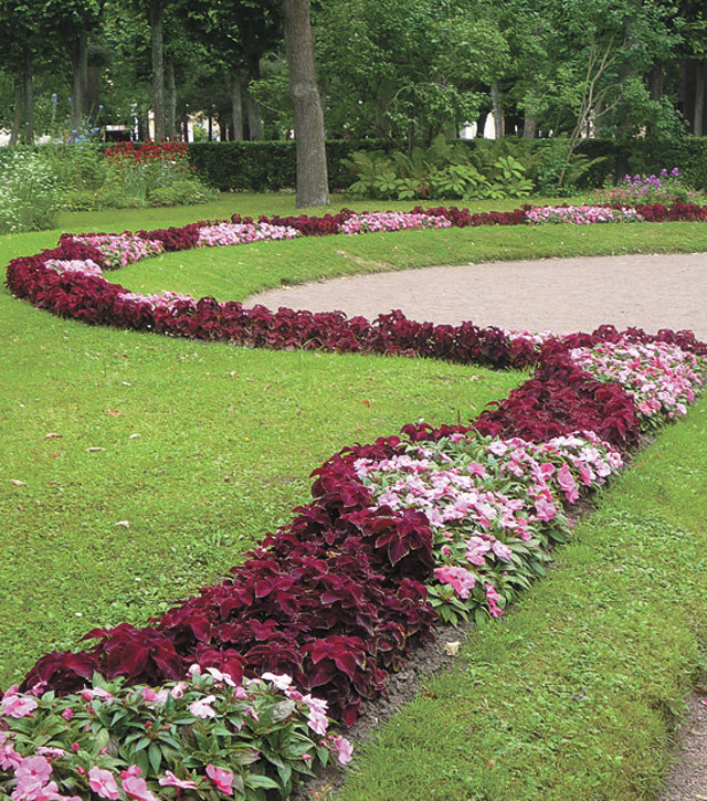дорожка из цветов фото стиле дудлинг