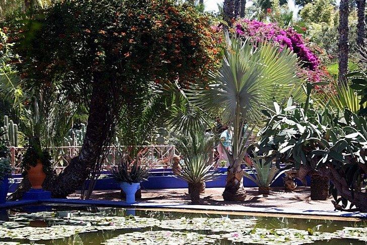 Сады Феса