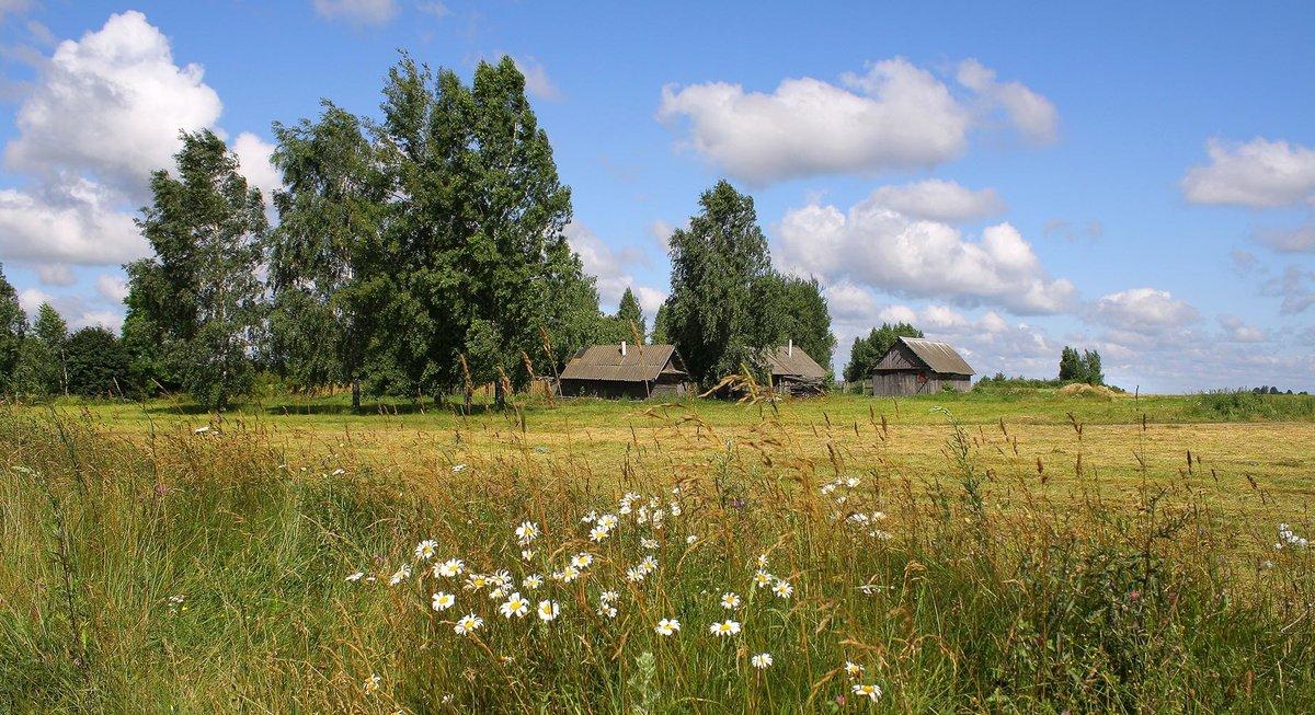 Весна, картинки лето в деревне