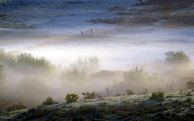 туман  над швецией