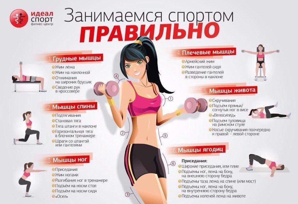 Похудеть в тренажерном зале девушка программа