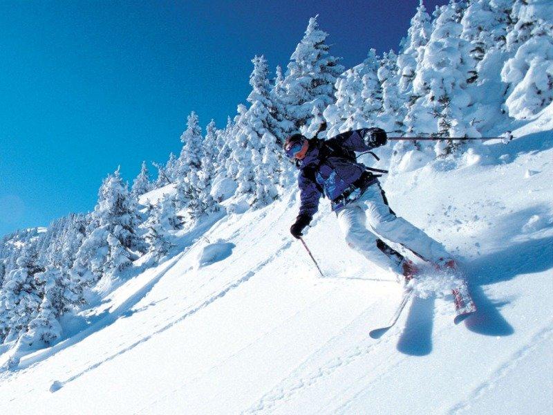Лыжник мчится с горы.