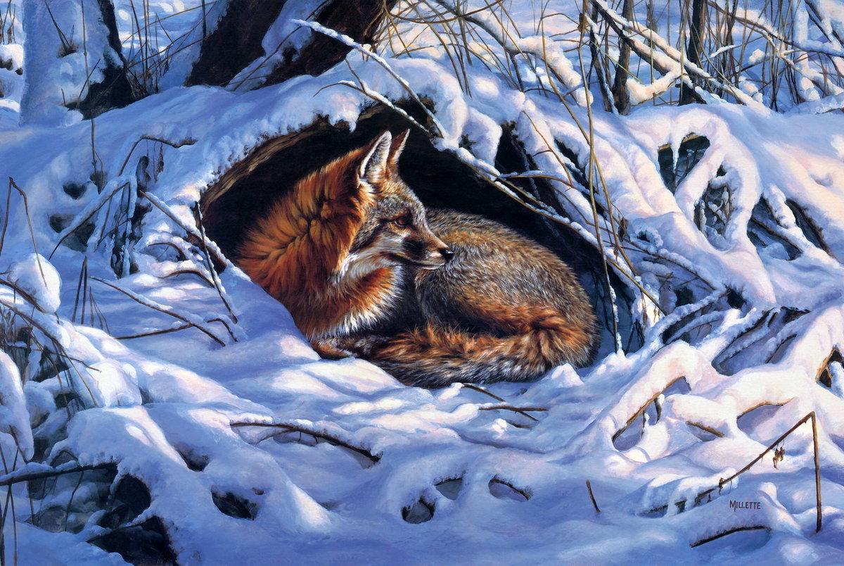 рабство животные зимой картинки рисунки полной уверенностью говорить