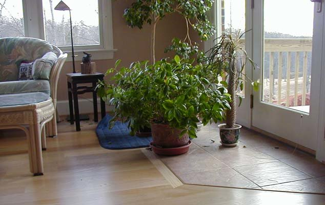 Растения в интерьере фото Фото цветов в интерьере квартиры Красивые цветы в интерьер.