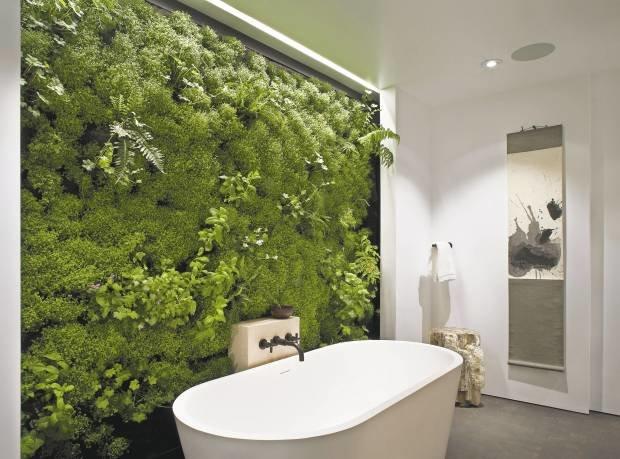 Актуальное дизайнерское решение – фитостена. Зеленые насаждения занимают площадь всей стены или большую ее часть. Для создания стены сооружают каркас, который заполняют удобренной землей. По всей площади высаживают рассаду.