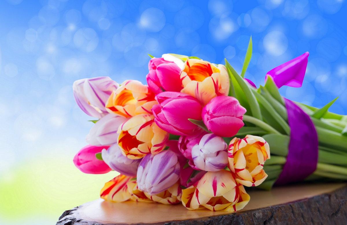 Луга, открытка с красивым букетом тюльпанов