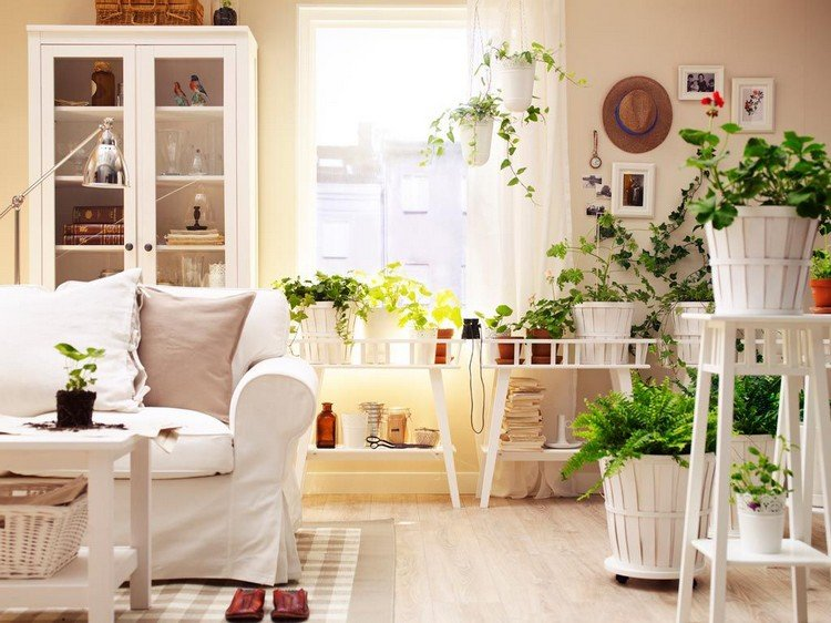 Растения привносят отличное настроение в светлую гостиную в стиле Прованс
