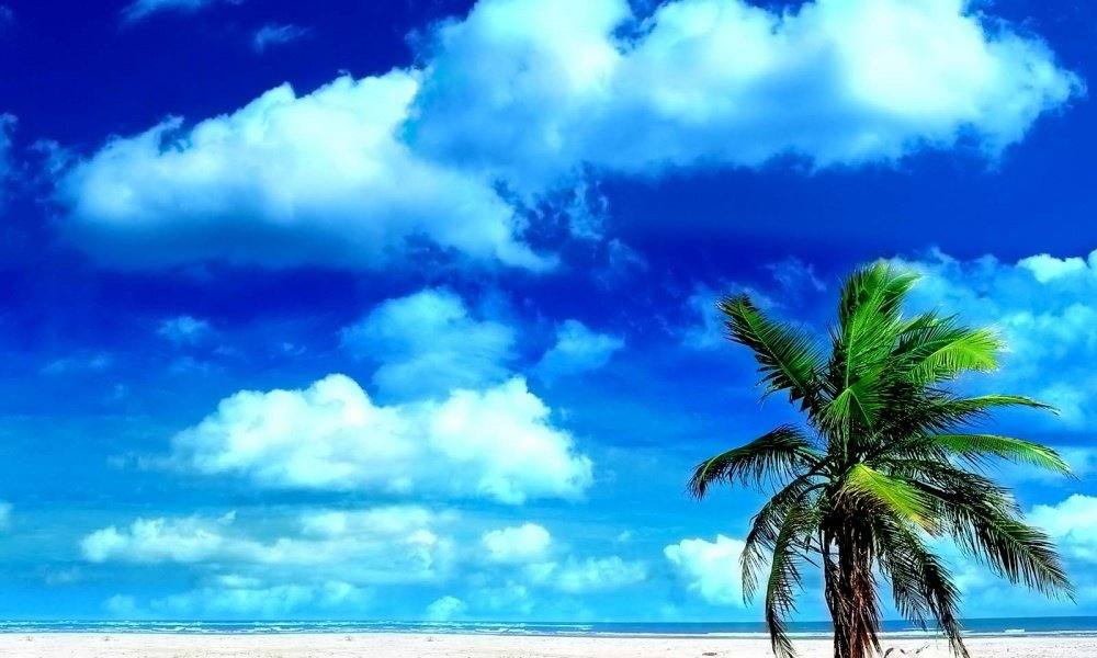 наряд картинки лето море солнце жара настаиваем рекомендуем делать