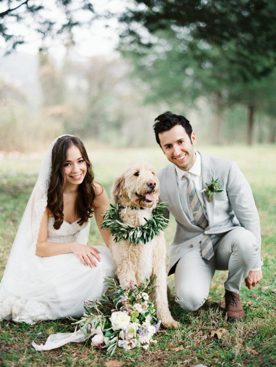 Аренда животных на свадебную фотосессию