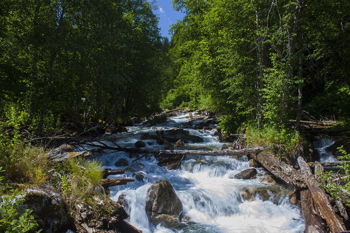 Картинки горные реки