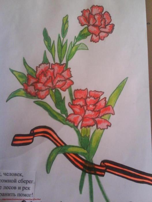 нарисовать цветы на открытке к 9 мая ряде текстов
