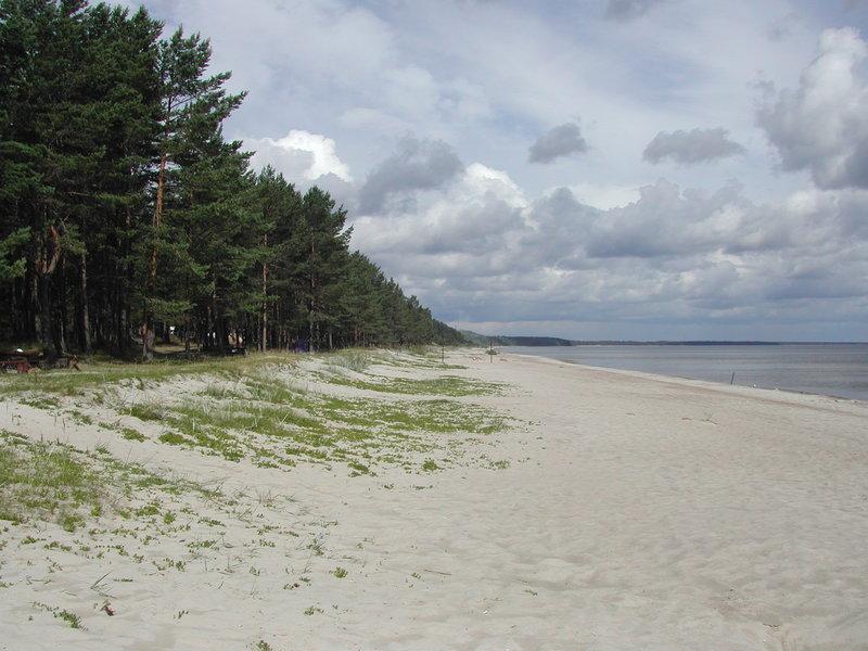 Латвия: туры из Москвы, цены на отдых в Латвии от туроператора Де Визу Туры в Латвию — пляж Юрмалы