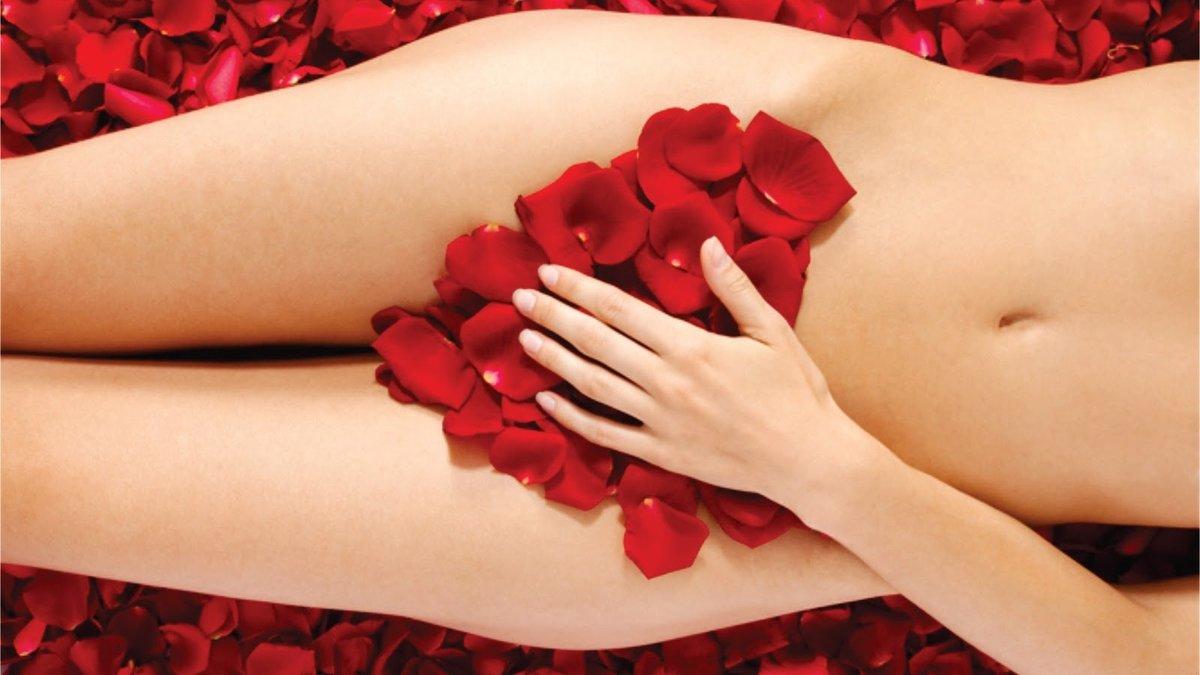 Фото женского тела органов, Женские половые органы строение и функции 12 фотография