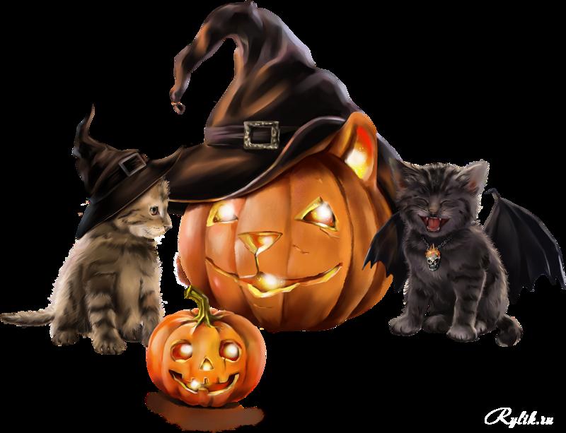 коты хэллоуин стих лето любовалась тем