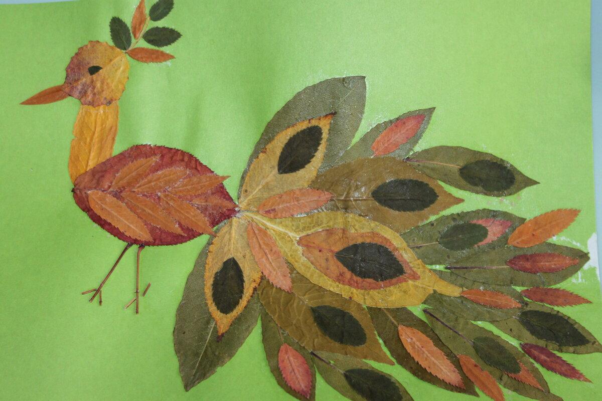 некоторое поделки и рисунки из листьев получали