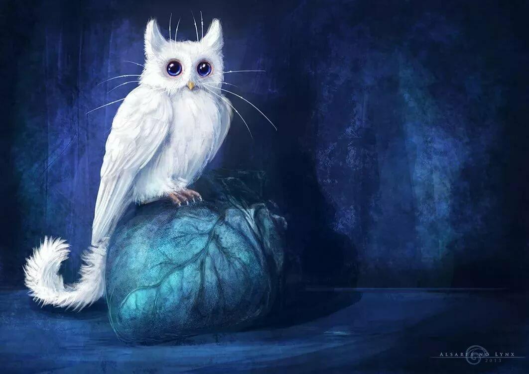 мифические существа коты цвета