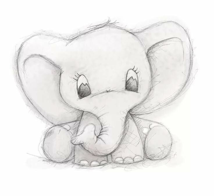 Милые животные рисунки карандашом для начинающих