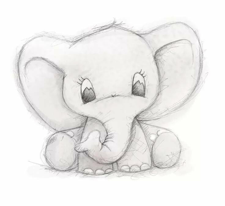 Рисунок с карандашом животные легкие