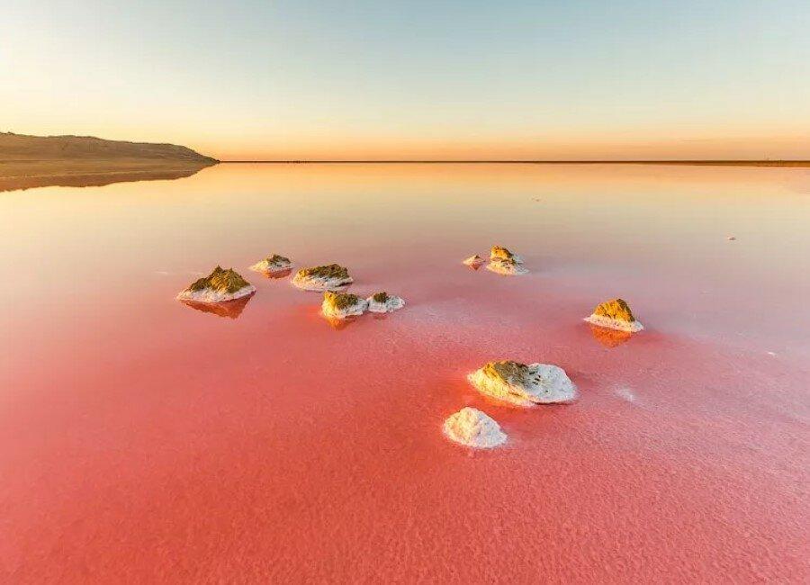 этой работе розовое озеро фото крым тесто добавляется зелень