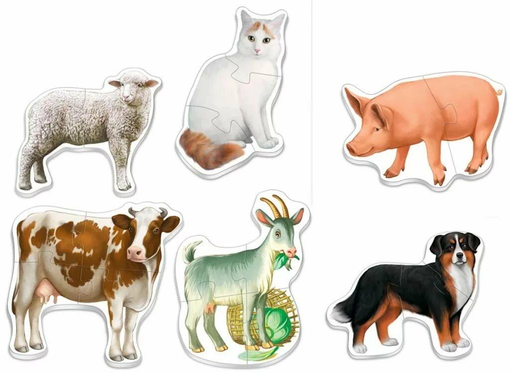 Набор картинок животных