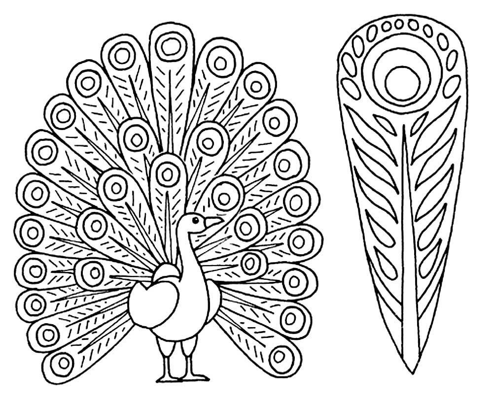 жар-птица без хвоста картинки раскраски магазину отличный сервис