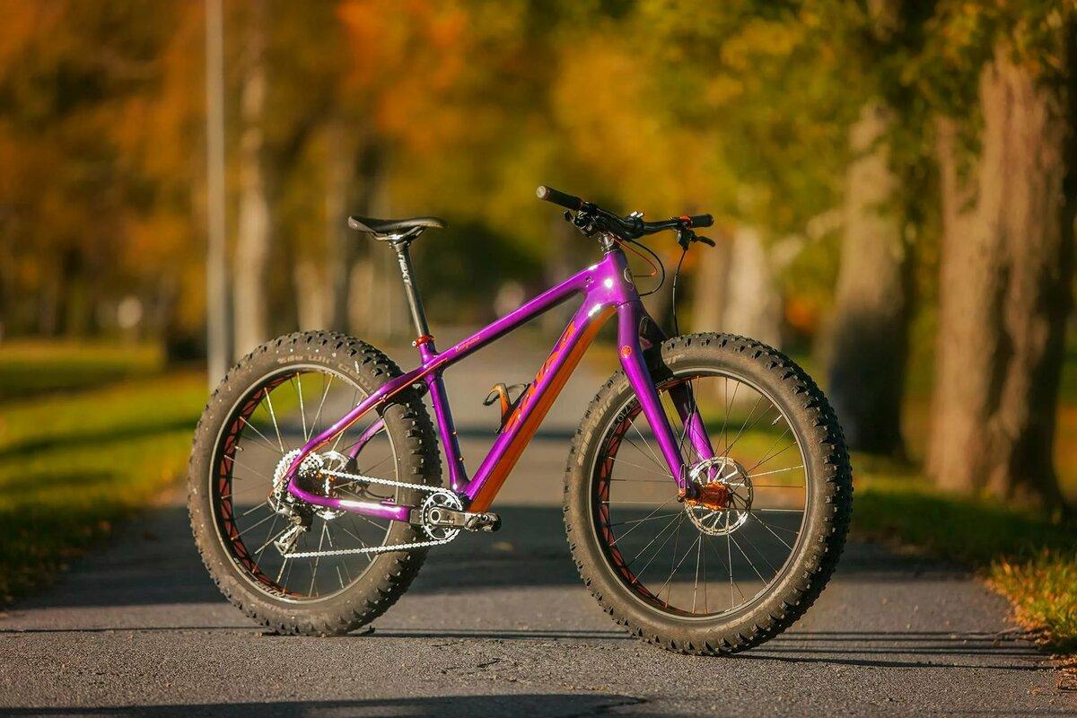 изысканые цветы картинки яркие велосипеды начала определимся терминами