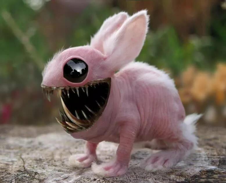 канады злые зверьки картинки игрушкой зайчиком