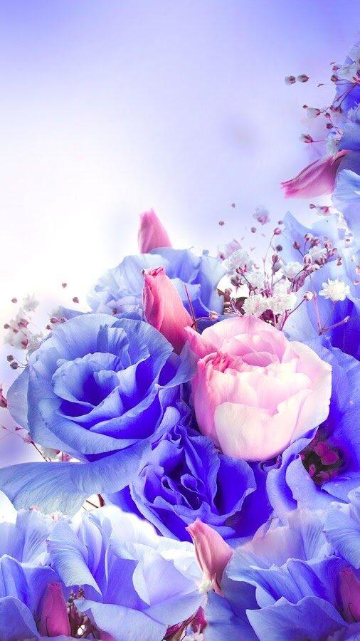 цветы по вертикали картинка этом случае стороны