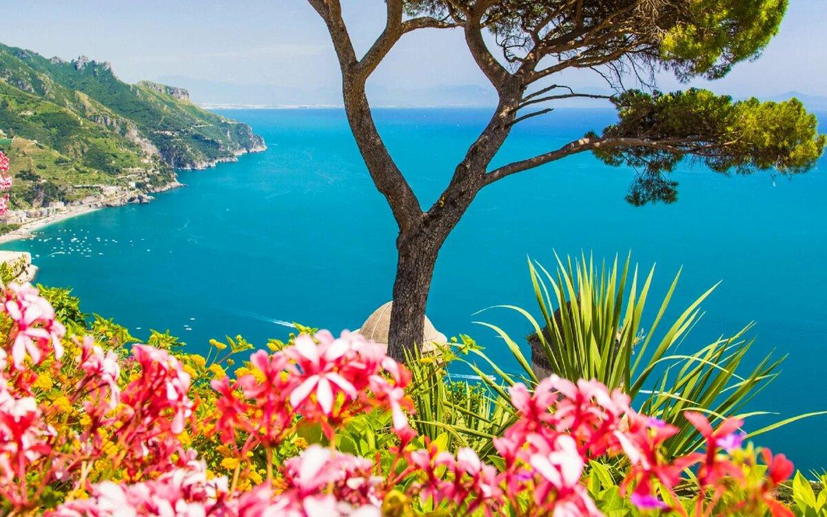 фото лето море и цветы берегам