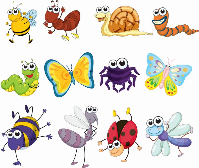 Смешные картинки насекомых для детей