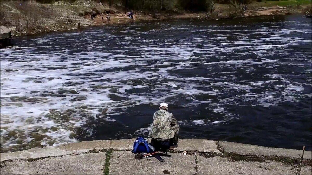 Ловля голавля на спиннинг: тактика и снасти для трофейного улова