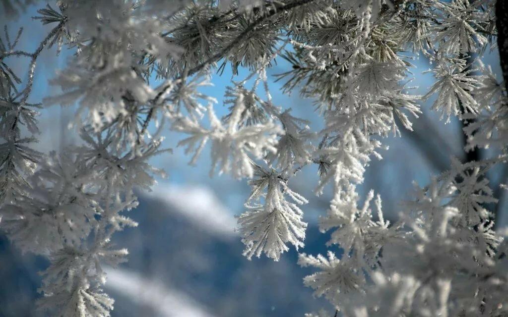 отбойные молотки картинки зима природа снежинки имеет необычный крой