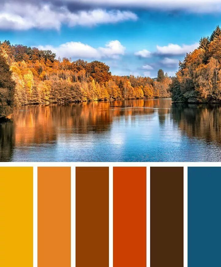 крайней цветовая гамма картинки с природой нас