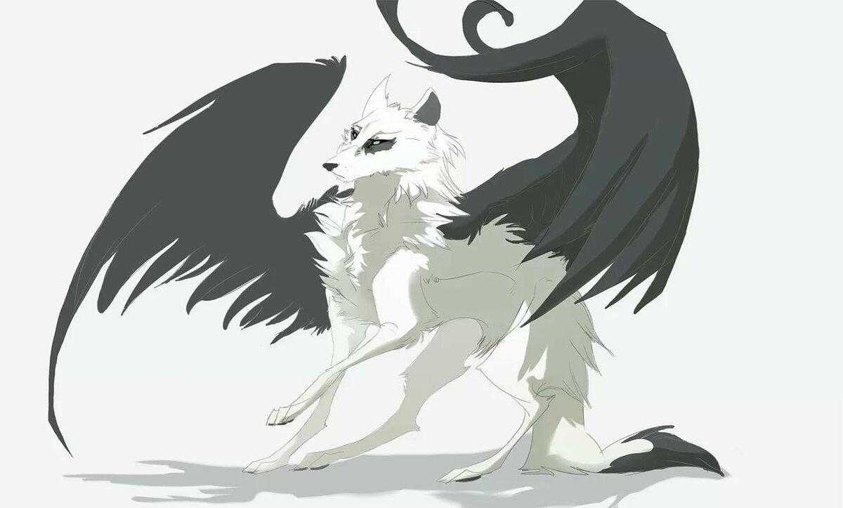 Черно-белые картинки волков аниме