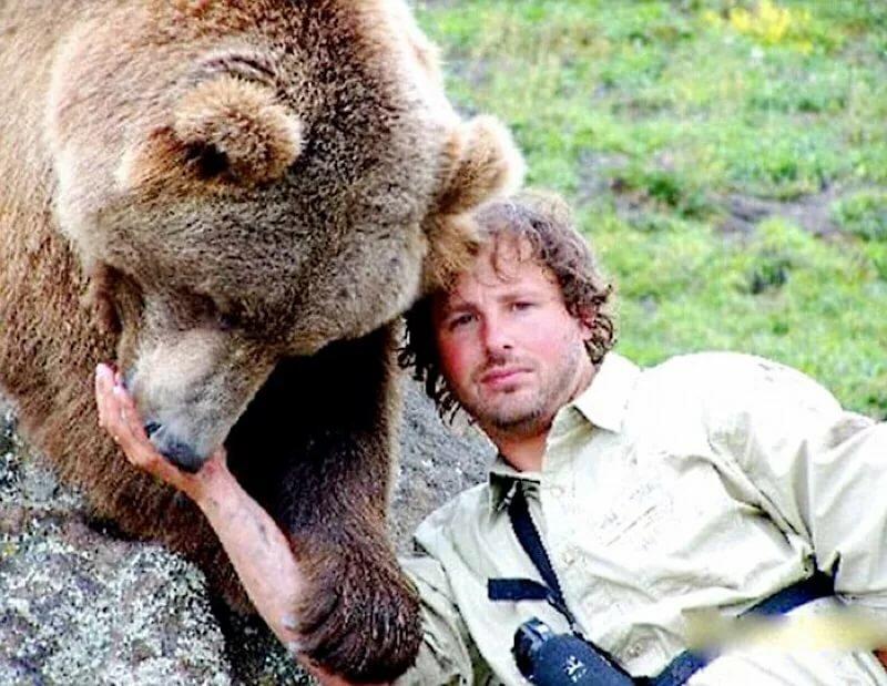 человек смотрит на медведя картинки конструкция прослужит