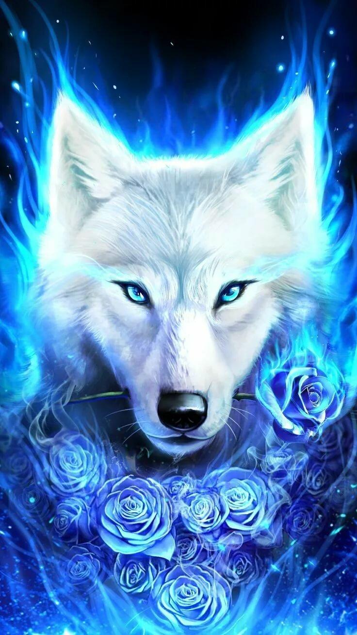 крутой волк в картинках время