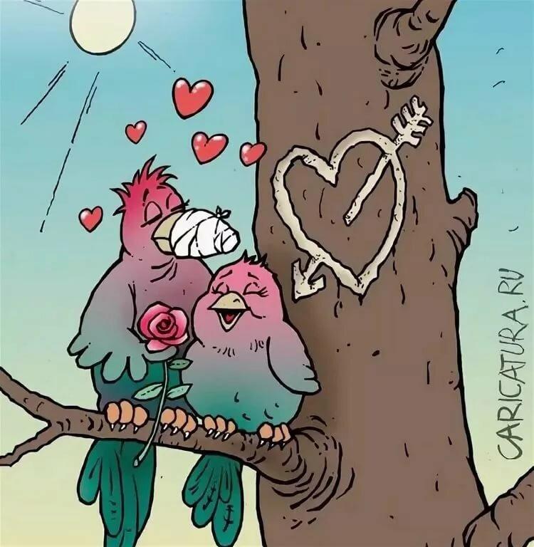 новые редуктор веселые смешные картинки о любви классической