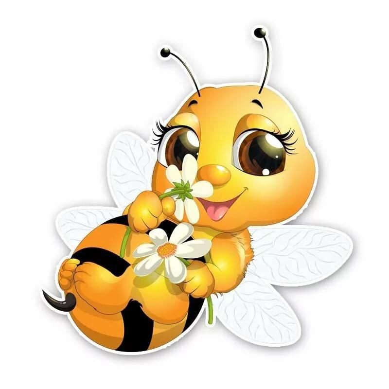 Картинки пчелки красивые
