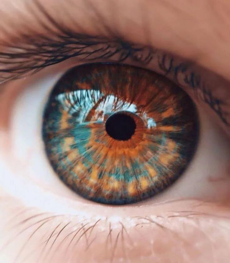 сине-зеленый цвет глаз в картинках