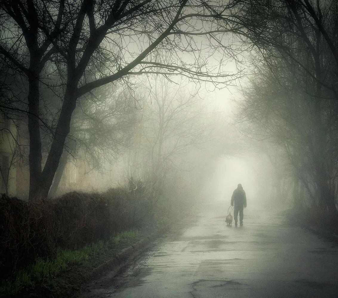 картинки ушел в туман предстоит многому