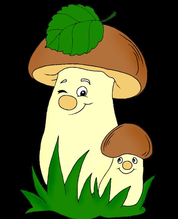 Смешные картинки грибов для детей, открытки день рождения